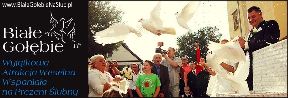Białe Gołębie - Wyjątkowa atrakcja Weselna, wspaniała na prezent Ślubny